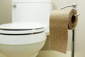 фото унитаза и туалетной бумаги